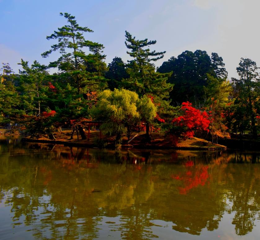 Nara Temple Garden
